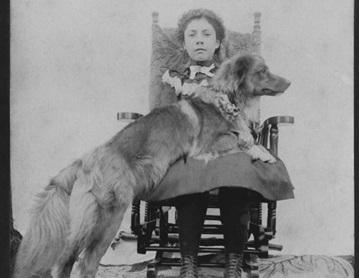 Toller v roce 1860 (foto CHS Scotia Pride Tollers)