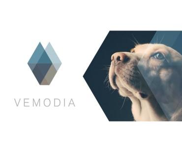 Nový partner – Vemodia