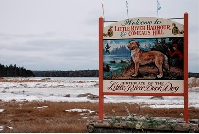 birthplace of the little river duck dog